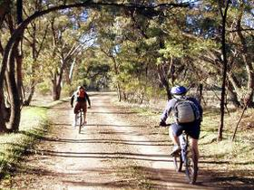 Bike About Mountain Bike Tours And Hire - Sydney Tourism