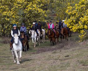 Burnelee Excursions on Horseback - Sydney Tourism